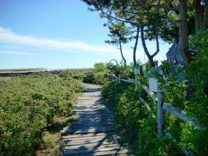 Wells Beach, Maine USA